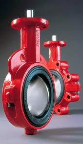 VALV.BORBOLETA 150MM DISCO INOX C- REDUTOR 250 LBS (BRAY) 1